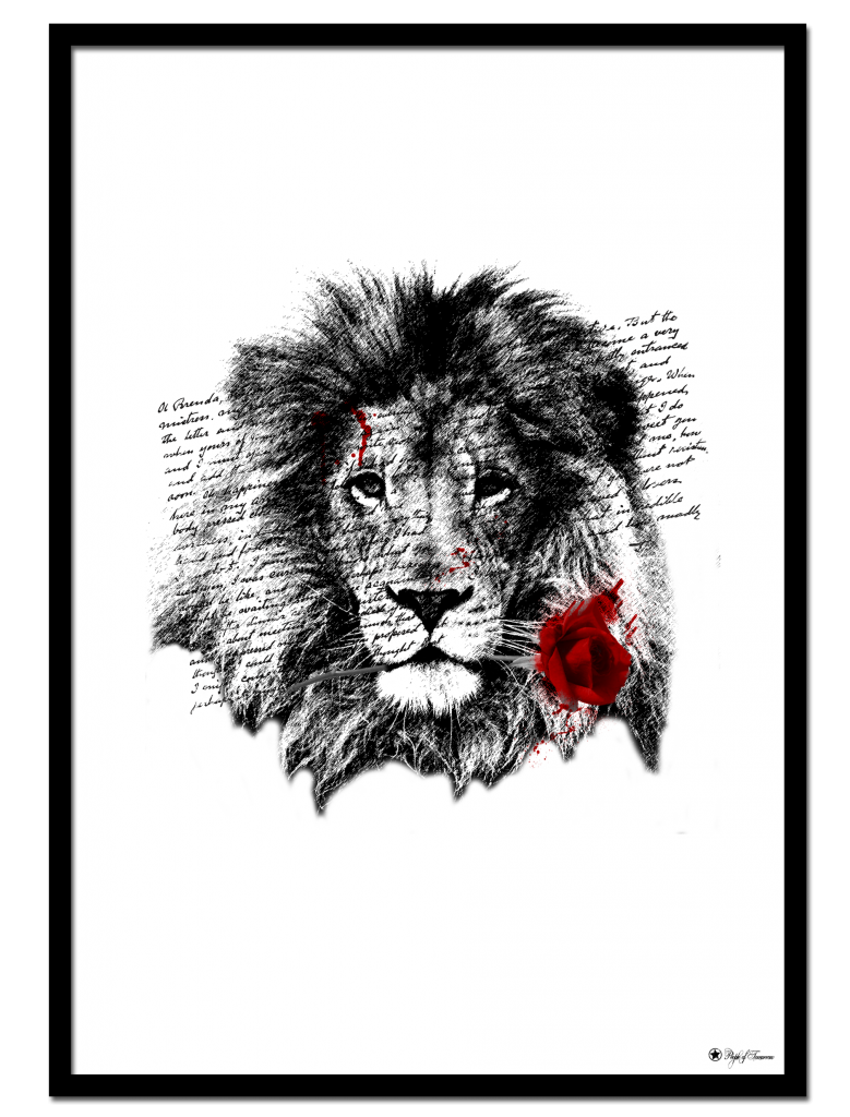 Lion Rose poster | Artistic print of a lion holding a red rose.
