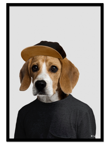 Joey the Beagle poster | Funny poster of a beagle dressed as a human.