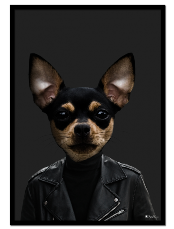 Tito the Chihuahua poster | Funny poster of a chihuahua dressed as a human.